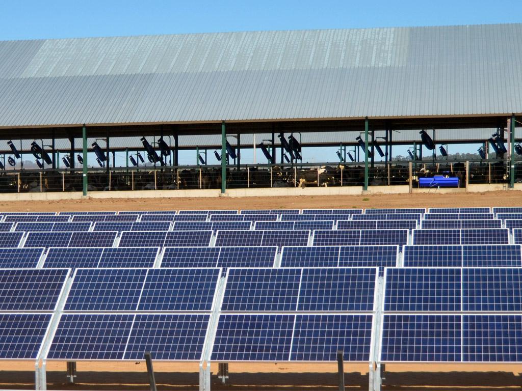 Parque Solar con Estructuras Tonka